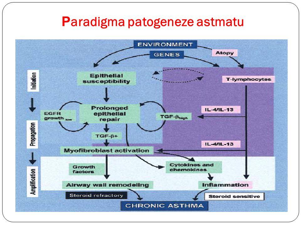 P aradigma patogeneze astmatu