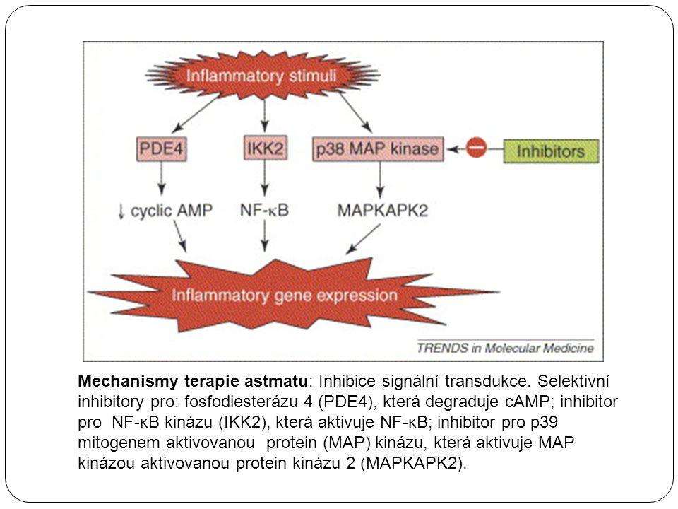 Mechanismy terapie astmatu: Inhibice signální transdukce. Selektivní inhibitory pro: fosfodiesterázu 4 (PDE4), která degraduje cAMP; inhibitor pro NF-