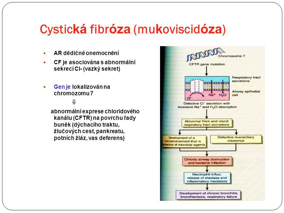 Cystic ká fibr óza (mu k oviscid óza ) AR dědičné onemocnění CF je asociována s abnormální sekrecí Cl- (vazký sekret) Gen je lokalizován na chromozomu