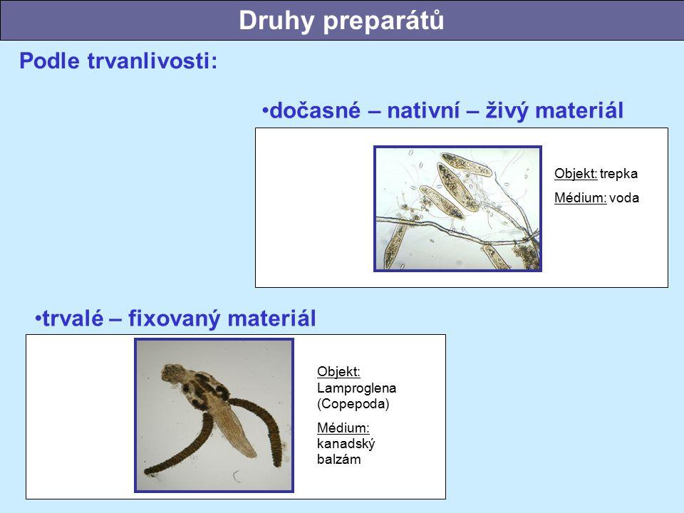 Podle trvanlivosti: Objekt: Lamproglena (Copepoda) Médium: kanadský balzám Objekt: trepka Médium: voda trvalé – fixovaný materiál dočasné – nativní – živý materiál Druhy preparátů