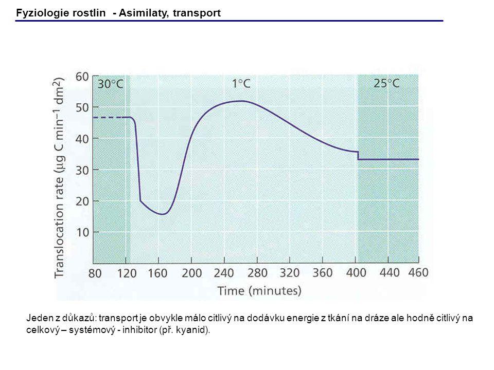 Fyziologie rostlin - Asimilaty, transport Jeden z důkazů: transport je obvykle málo citlivý na dodávku energie z tkání na dráze ale hodně citlivý na c