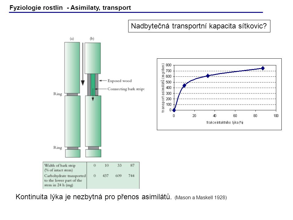 Fyziologie rostlin - Asimilaty, transport Plants in Action Fig.