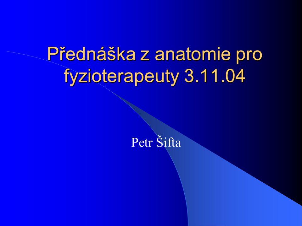 Přednáška z anatomie pro fyzioterapeuty 3.11.04 Petr Šifta
