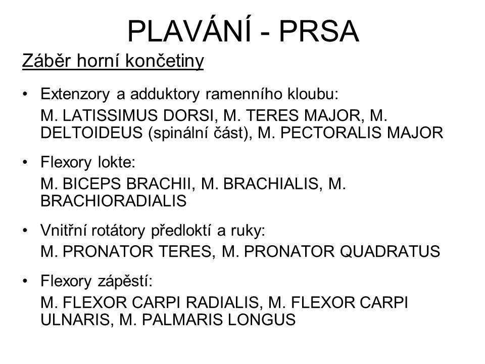 Záběr horní končetiny Extenzory a adduktory ramenního kloubu: M. LATISSIMUS DORSI, M. TERES MAJOR, M. DELTOIDEUS (spinální část), M. PECTORALIS MAJOR