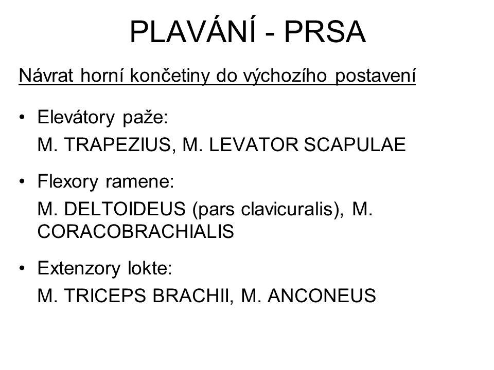 Návrat horní končetiny do výchozího postavení Elevátory paže: M. TRAPEZIUS, M. LEVATOR SCAPULAE Flexory ramene: M. DELTOIDEUS (pars clavicuralis), M.