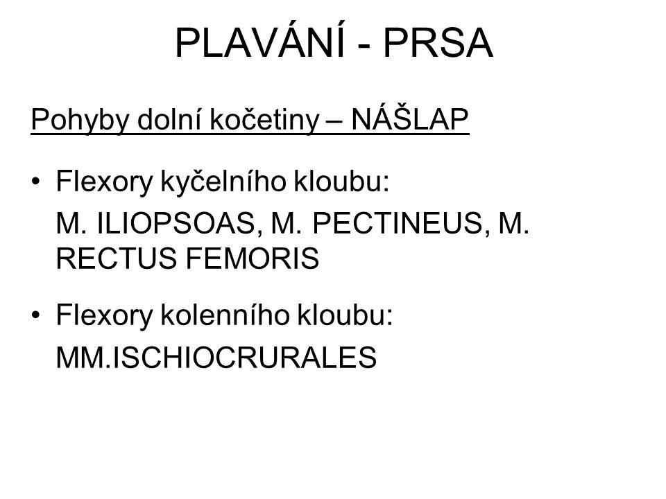 Pohyby dolní kočetiny – NÁŠLAP Flexory kyčelního kloubu: M. ILIOPSOAS, M. PECTINEUS, M. RECTUS FEMORIS Flexory kolenního kloubu: MM.ISCHIOCRURALES PLA