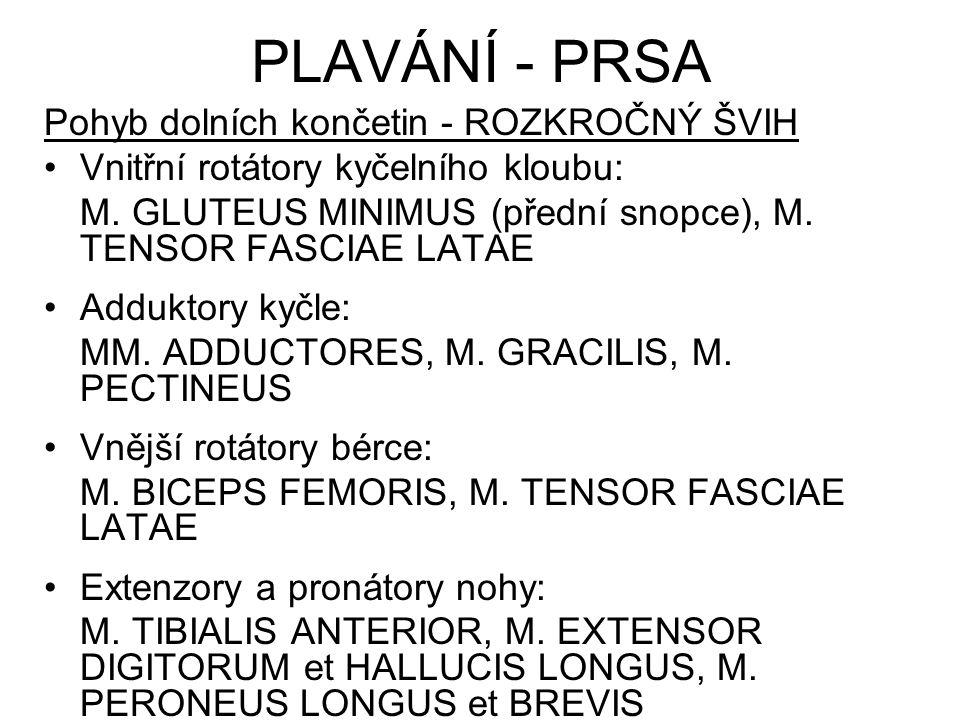 Pohyb dolních končetin - ROZKROČNÝ ŠVIH Vnitřní rotátory kyčelního kloubu: M. GLUTEUS MINIMUS (přední snopce), M. TENSOR FASCIAE LATAE Adduktory kyčle