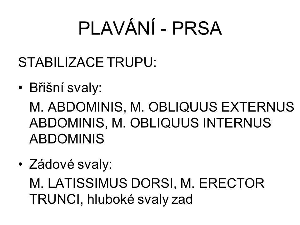 PLAVANÍ - KRAUL Pohyb horních končetin - TAH Flexory a adduktory ramenního kloubu: M.