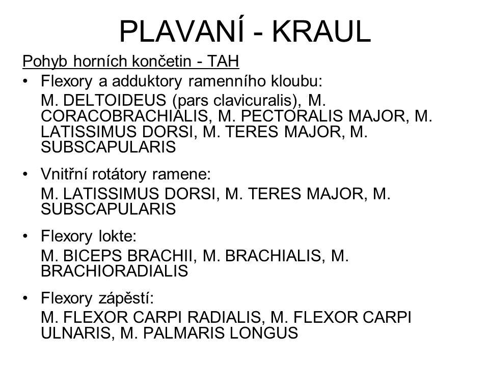 PLAVANÍ - KRAUL Pohyb horních končetin - TAH Flexory a adduktory ramenního kloubu: M. DELTOIDEUS (pars clavicuralis), M. CORACOBRACHIALIS, M. PECTORAL