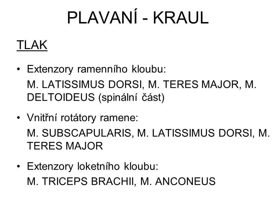 TLAK Extenzory ramenního kloubu: M. LATISSIMUS DORSI, M. TERES MAJOR, M. DELTOIDEUS (spinální část) Vnitřní rotátory ramene: M. SUBSCAPULARIS, M. LATI