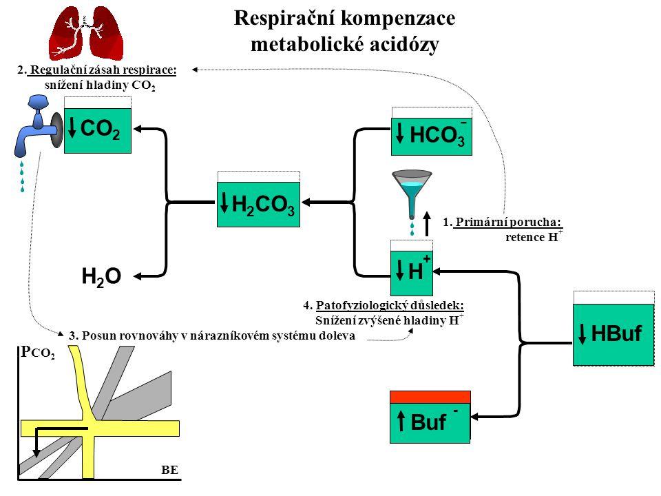 CO 2 H2OH2O H 2 CO 3 HCO 3 H+H+ 2. Regulační zásah respirace: snížení hladiny CO 2 1. Primární porucha: retence H + 3. Posun rovnováhy v nárazníkovém