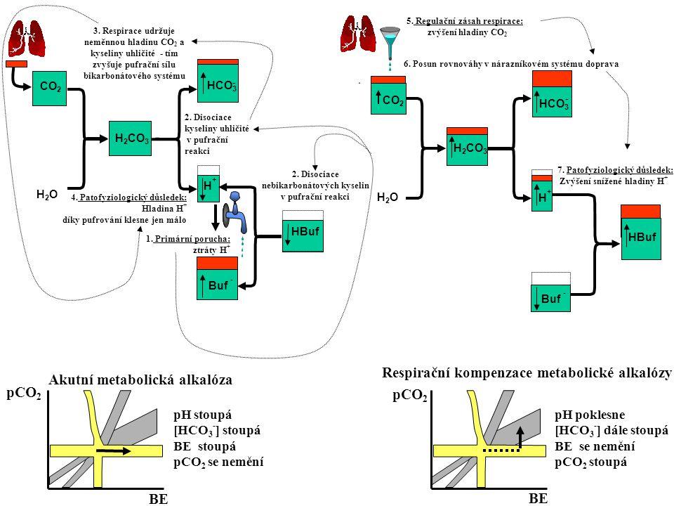 CO 2 H2OH2O H 2 CO 3 3. Respirace udržuje neměnnou hladinu CO 2 a kyseliny uhličité - tím zvyšuje pufrační sílu bikarbonátového systému 1. Primární po