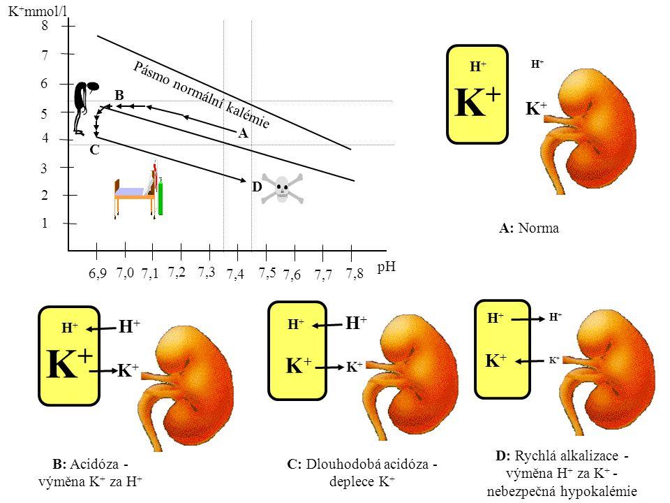 1 K + mmol/l 6,9 2 3 4 5 6 7 8 7,0 7,1 7,2 7,3 7,4 7,5 7,6 7,7 7,8 pH Pásmo normální kalémie B C D K+K+ H+H+ H+H+ K+K+ K+K+ H+H+ H+H+ K+K+ K+K+ H+H+ H