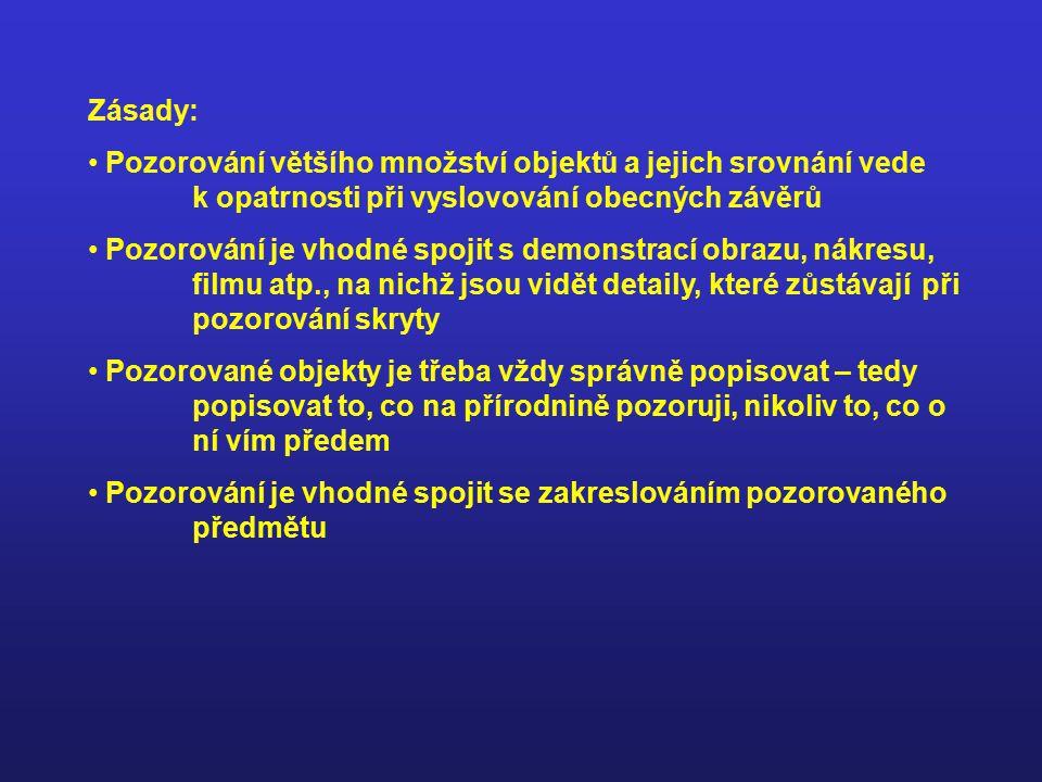 Pozorování krátkodobé – morfologické p., anatomické p.