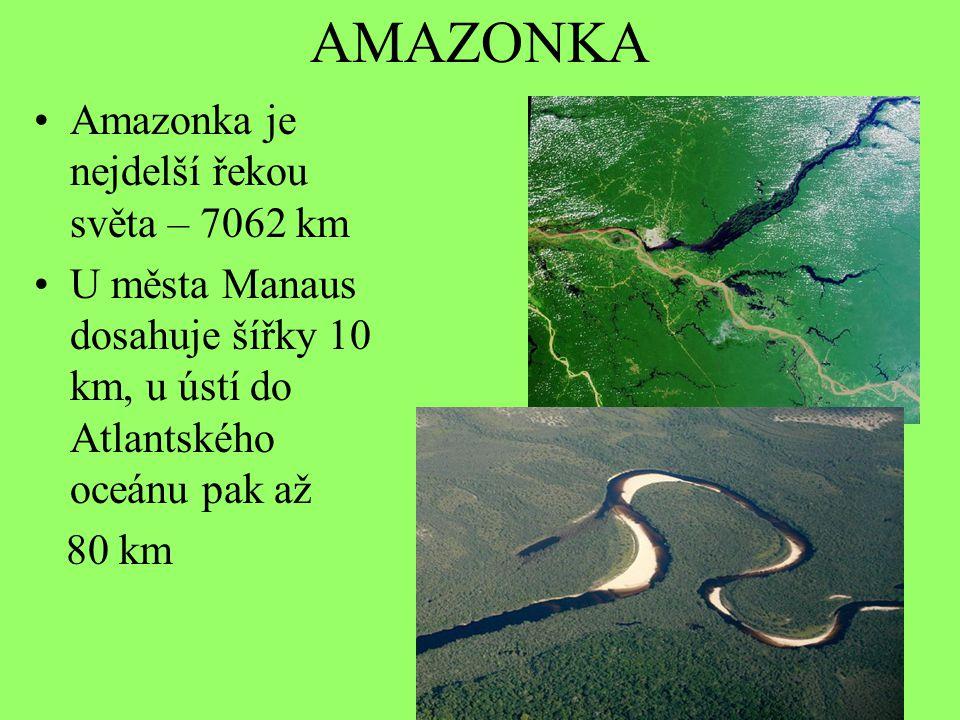AMAZONKA Amazonka je nejdelší řekou světa – 7062 km U města Manaus dosahuje šířky 10 km, u ústí do Atlantského oceánu pak až 80 km