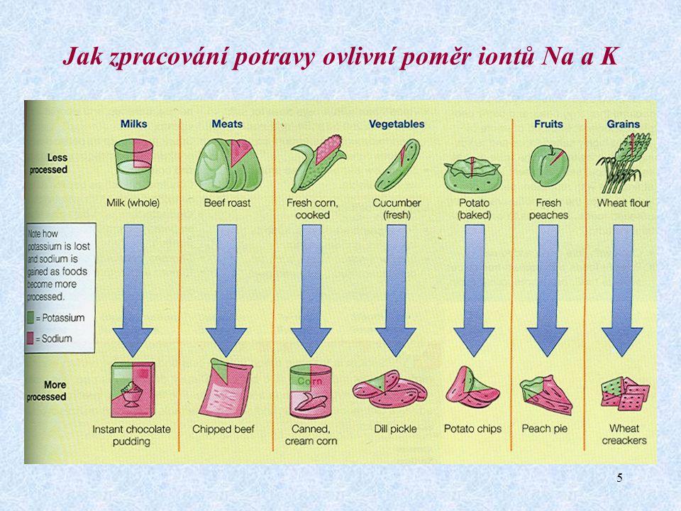 5 Jak zpracování potravy ovlivní poměr iontů Na a K