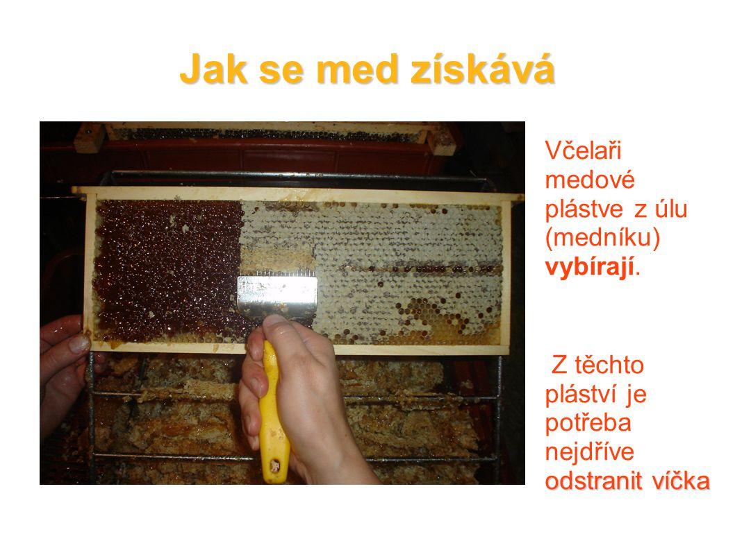Jak se med získává Včelaři medové plástve z úlu (medníku) vybírají. odstranit víčka Z těchto pláství je potřeba nejdříve odstranit víčka