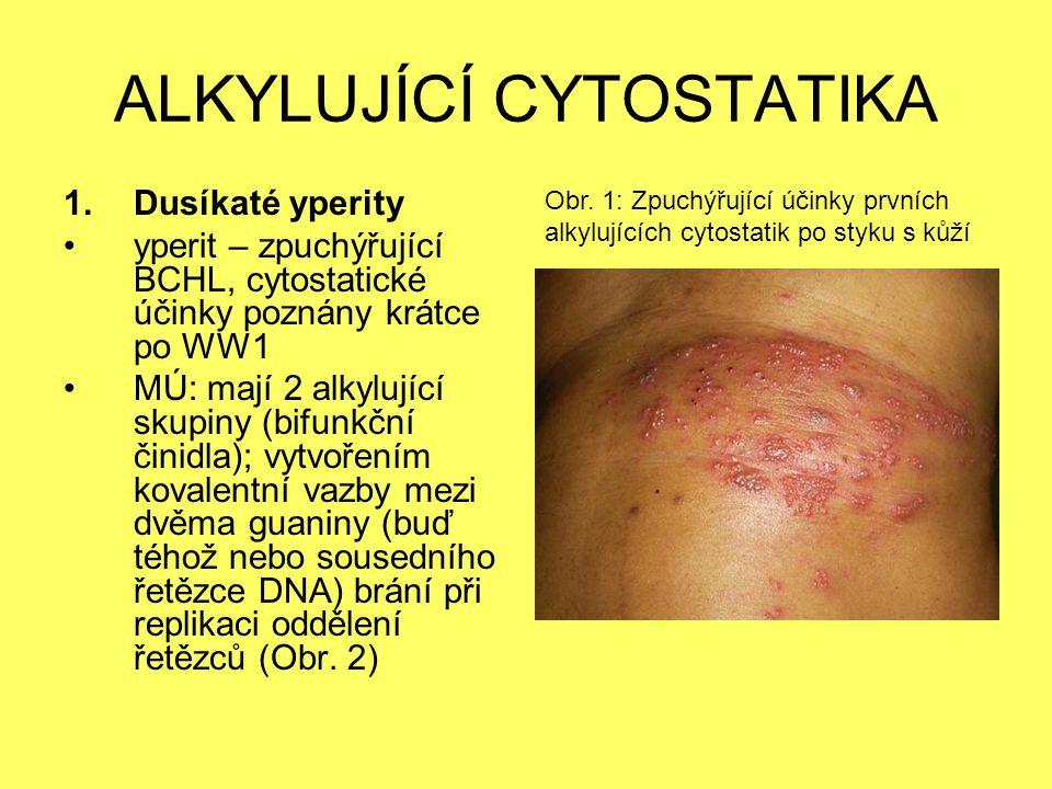 ALKYLUJÍCÍ CYTOSTATIKA 1.Dusíkaté yperity yperit – zpuchýřující BCHL, cytostatické účinky poznány krátce po WW1 MÚ: mají 2 alkylující skupiny (bifunkč