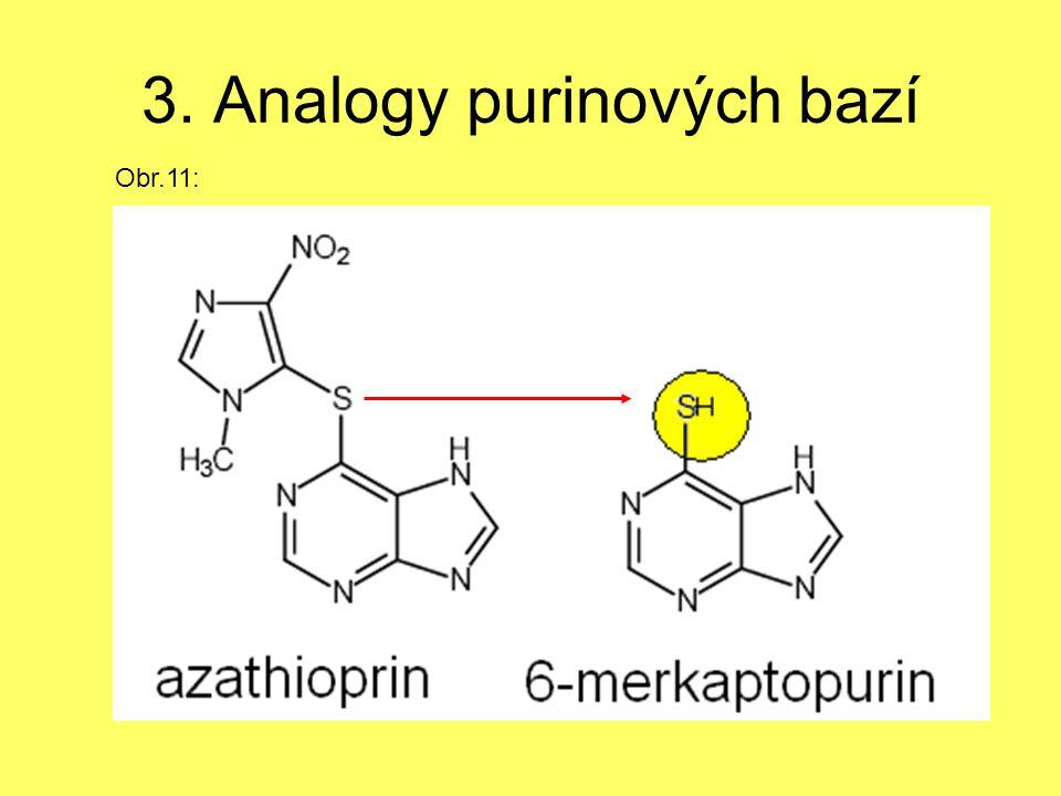 3. Analogy purinových bazí Obr.11: