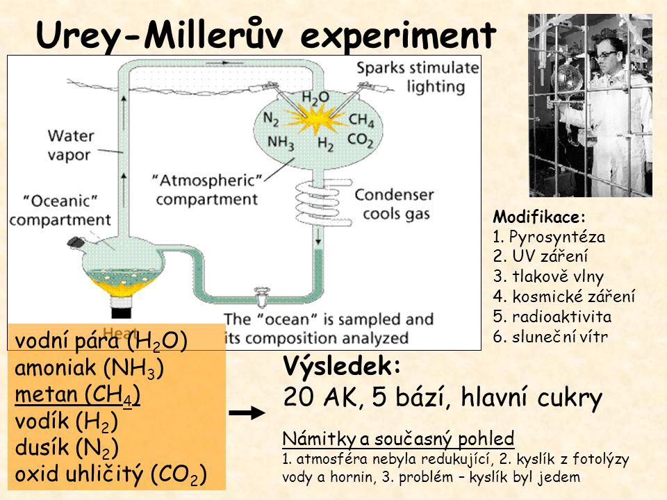 Urey-Millerův experiment vodní pára (H 2 O) amoniak (NH 3 ) metan (CH 4 ) vodík (H 2 ) dusík (N 2 ) oxid uhličitý (CO 2 ) Modifikace: 1. Pyrosyntéza 2