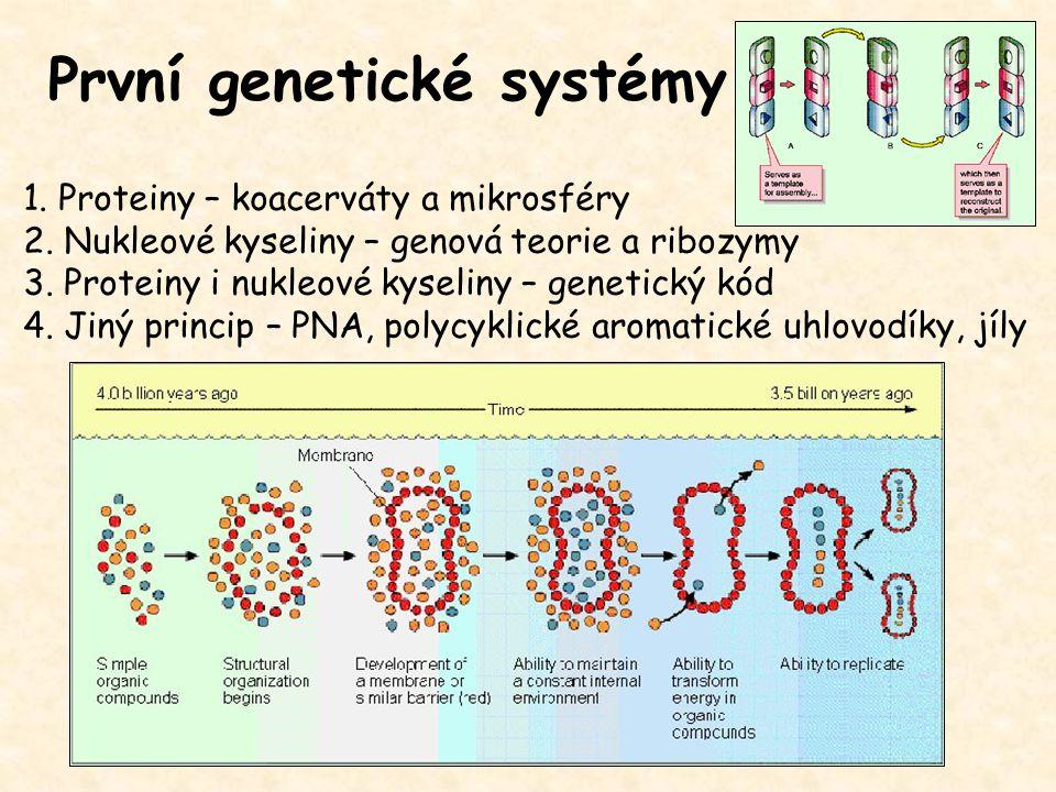 První genetické systémy 1. Proteiny – koacerváty a mikrosféry 2. Nukleové kyseliny – genová teorie a ribozymy 3. Proteiny i nukleové kyseliny – geneti