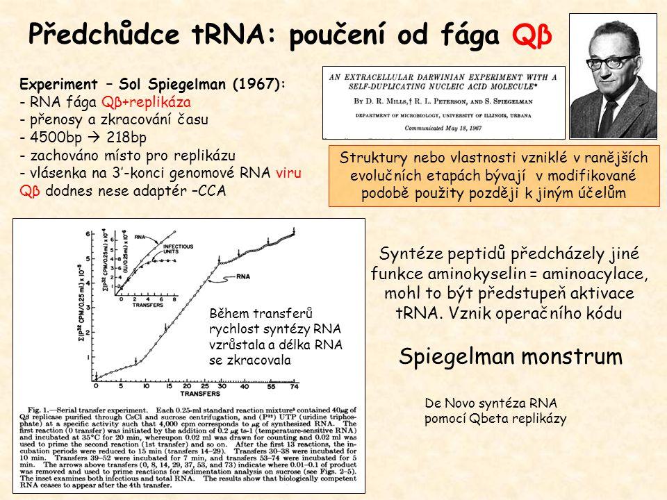 Předchůdce tRNA: poučení od fága Qβ Syntéze peptidů předcházely jiné funkce aminokyselin = aminoacylace, mohl to být předstupeň aktivace tRNA. Vznik o