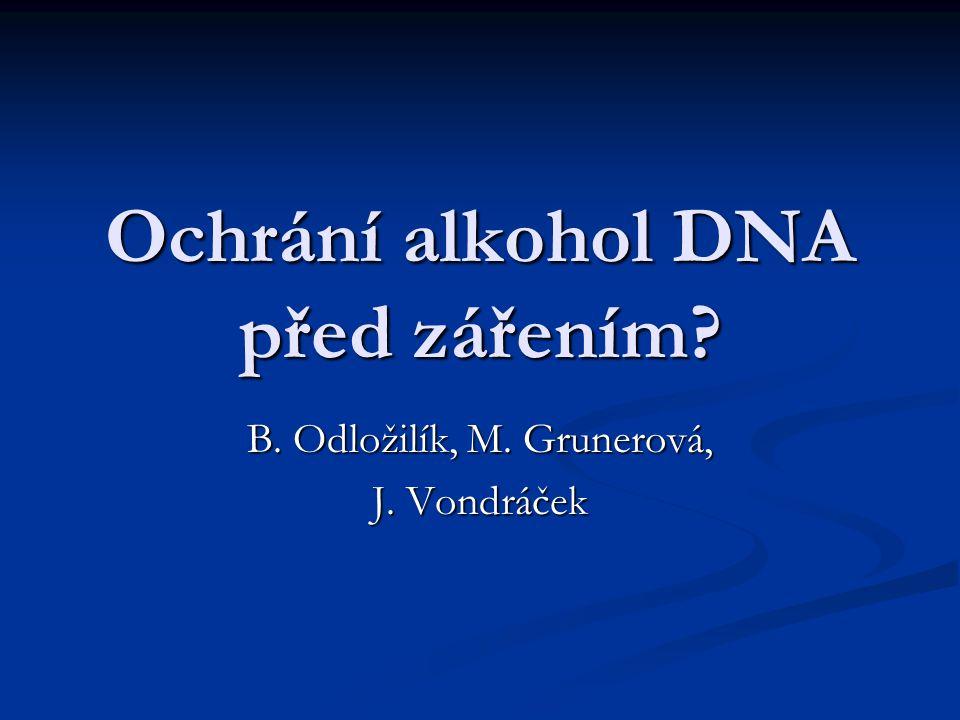 Ochrání alkohol DNA před zářením? B. Odložilík, M. Grunerová, J. Vondráček