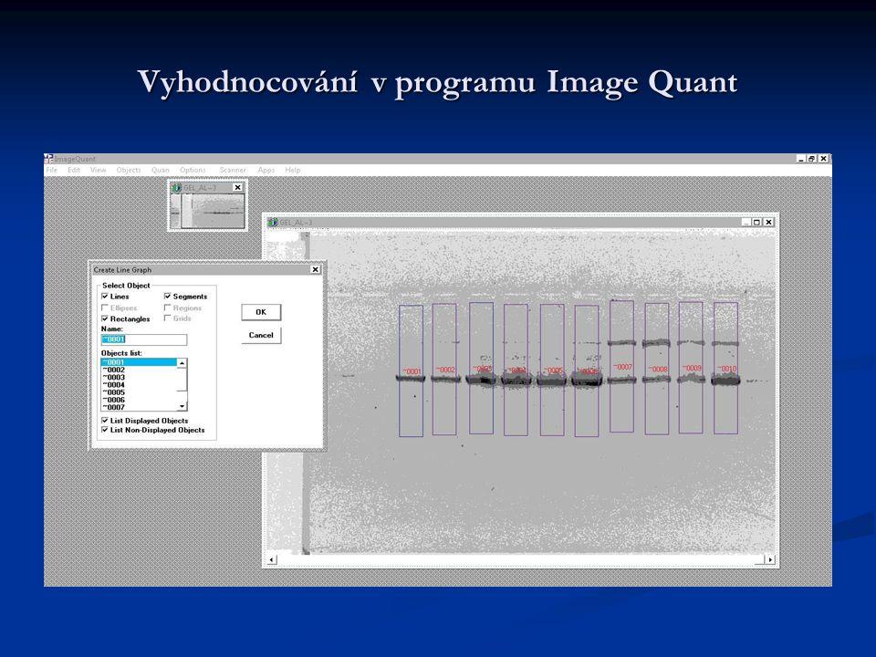 Vyhodnocování v programu Image Quant