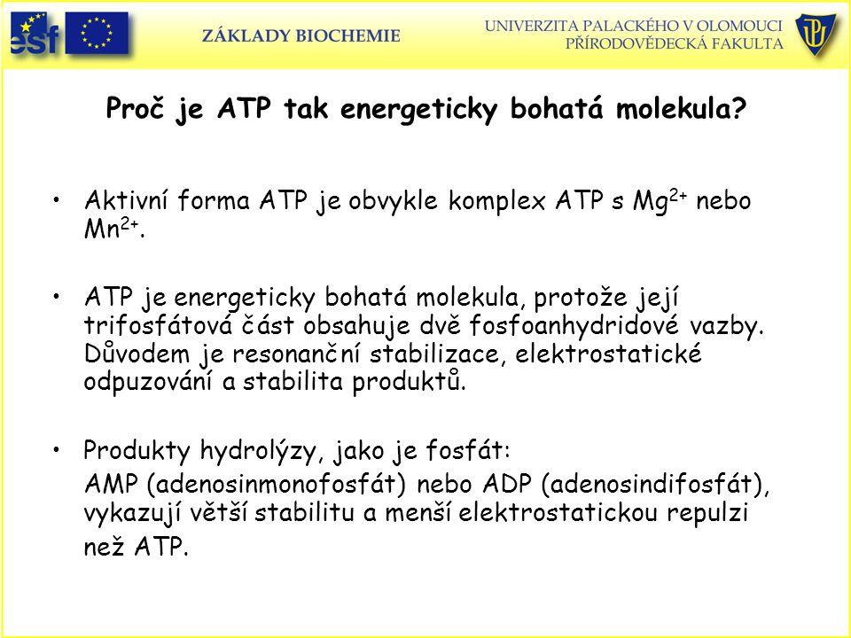 Proč je ATP tak energeticky bohatá molekula? Aktivní forma ATP je obvykle komplex ATP s Mg 2+ nebo Mn 2+. ATP je energeticky bohatá molekula, protože