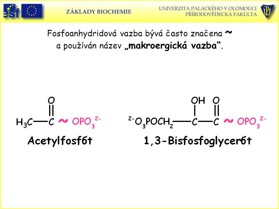 """Fosfoanhydridová vazba bývá často značena ~ a používán název """"makroergická vazba ."""