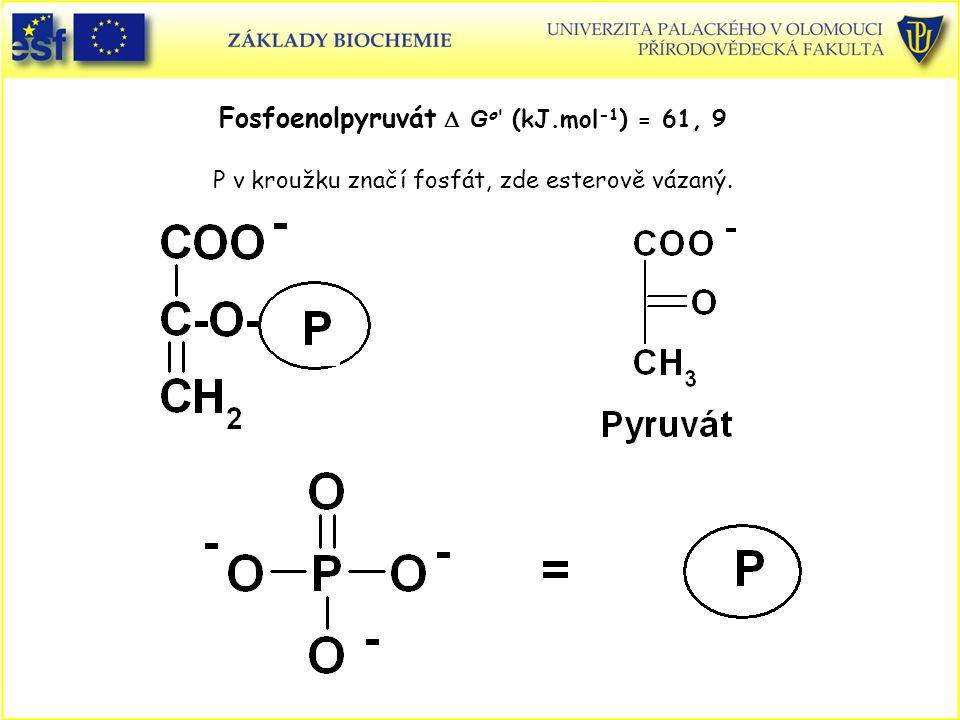 Fosfoenolpyruvát  G o (kJ.mol -1 ) = 61, 9 P v kroužku značí fosfát, zde esterově vázaný.