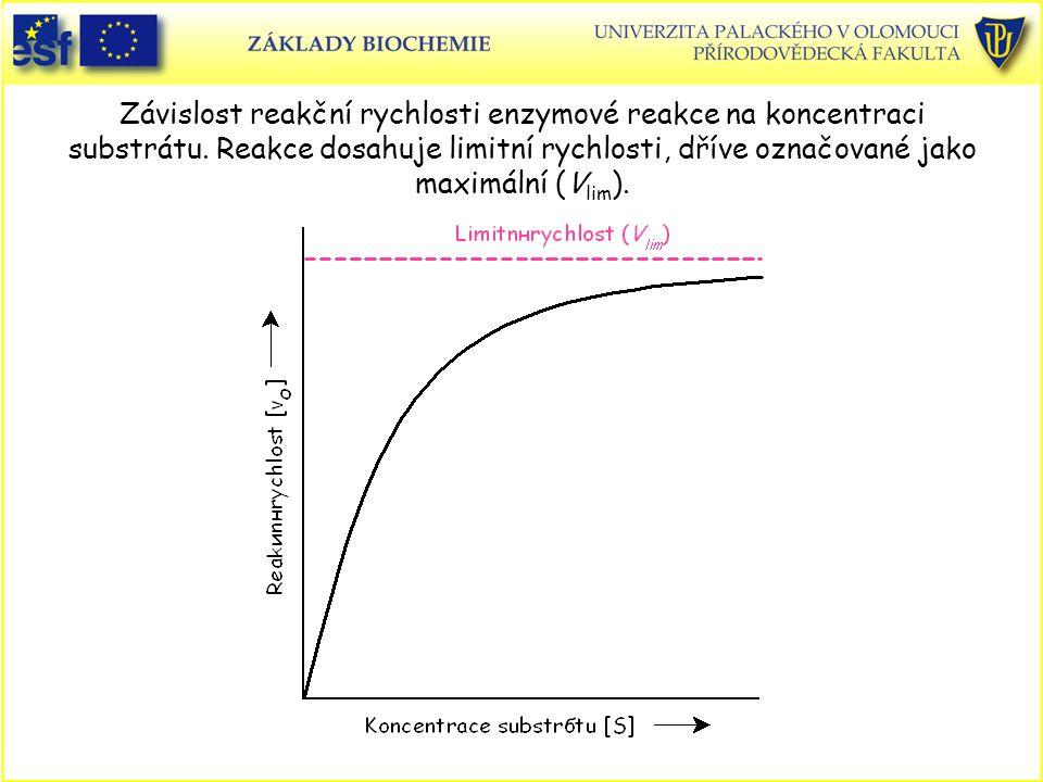 Závislost reakční rychlosti enzymové reakce na koncentraci substrátu. Reakce dosahuje limitní rychlosti, dříve označované jako maximální (V lim ).
