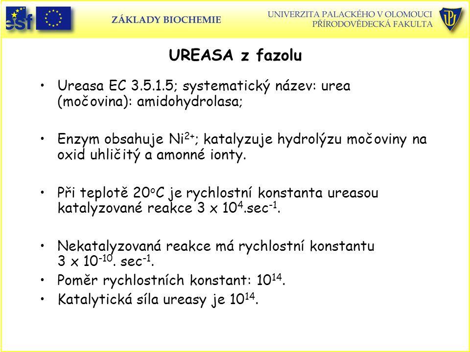 UREASA z fazolu Ureasa EC 3.5.1.5; systematický název: urea (močovina): amidohydrolasa; Enzym obsahuje Ni 2+ ; katalyzuje hydrolýzu močoviny na oxid uhličitý a amonné ionty.