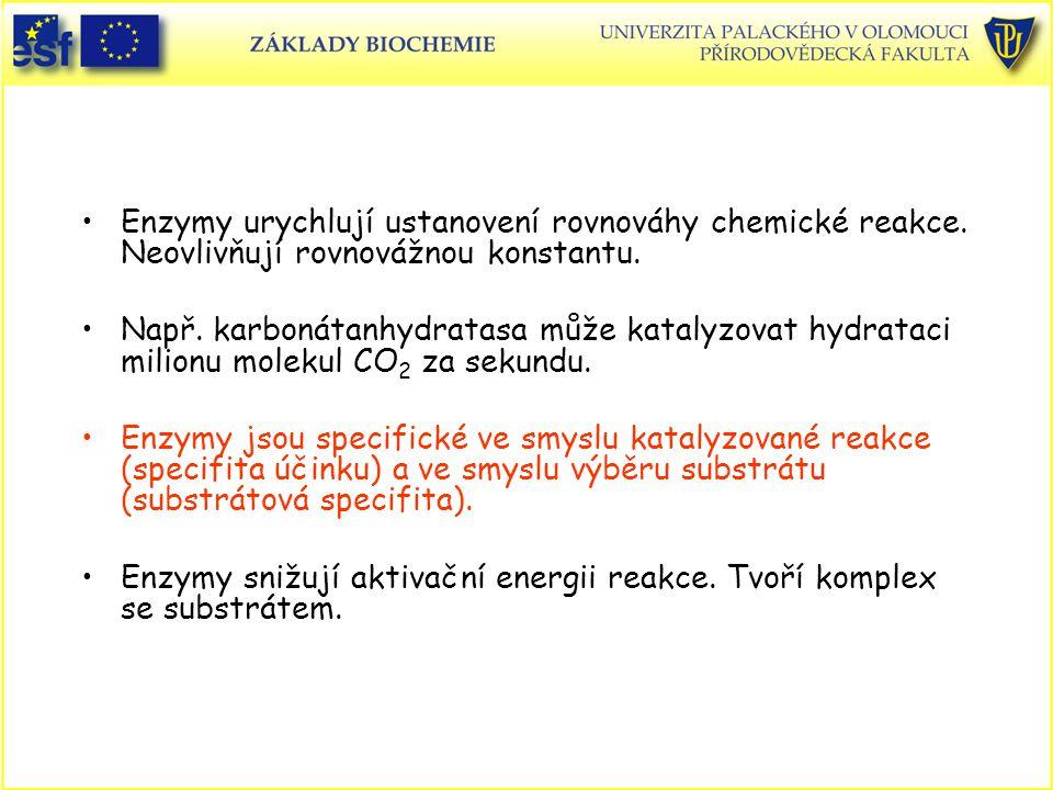 Enzymy urychlují ustanovení rovnováhy chemické reakce. Neovlivňují rovnovážnou konstantu. Např. karbonátanhydratasa může katalyzovat hydrataci milionu