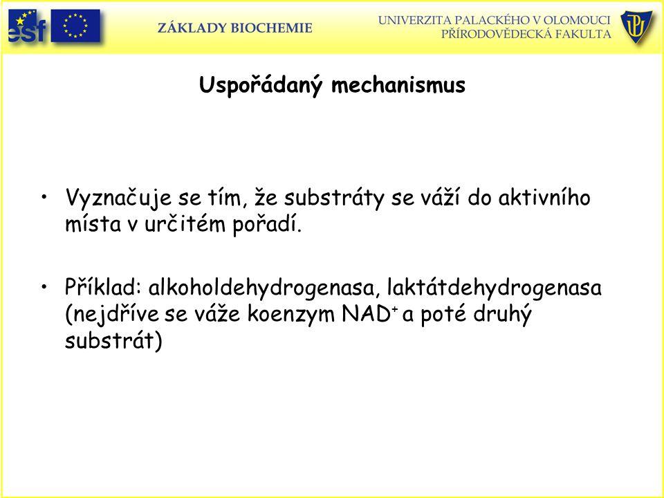 Uspořádaný mechanismus Vyznačuje se tím, že substráty se váží do aktivního místa v určitém pořadí.