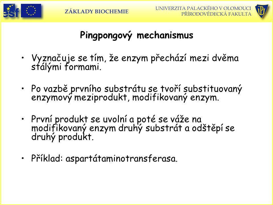 Vyznačuje se tím, že enzym přechází mezi dvěma stálými formami.