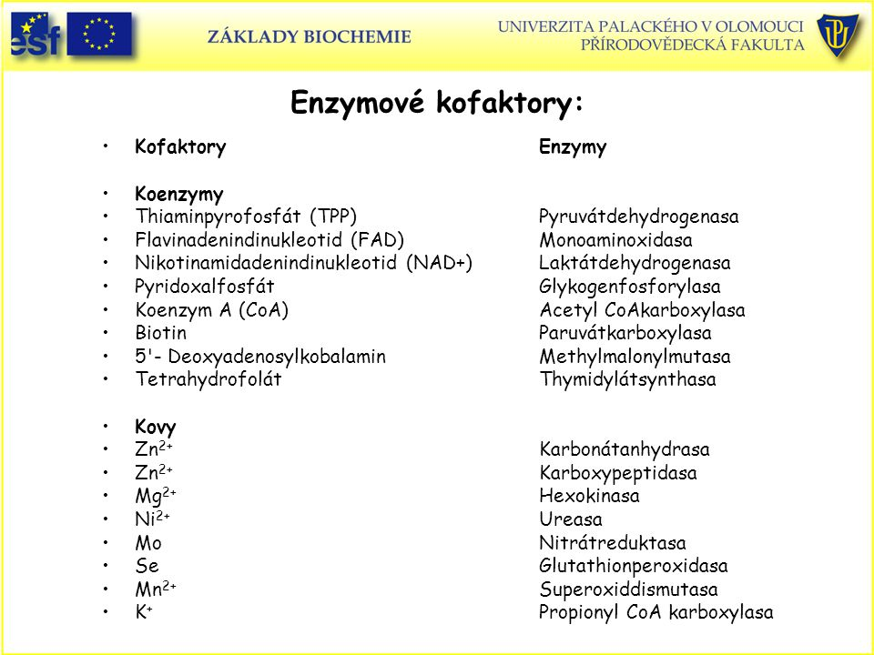 Kofaktory Enzymy Koenzymy Thiaminpyrofosfát (TPP)Pyruvátdehydrogenasa Flavinadenindinukleotid (FAD)Monoaminoxidasa Nikotinamidadenindinukleotid (NAD+)Laktátdehydrogenasa PyridoxalfosfátGlykogenfosforylasa Koenzym A (CoA)Acetyl CoAkarboxylasa BiotinParuvátkarboxylasa 5 - DeoxyadenosylkobalaminMethylmalonylmutasa Tetrahydrofolát Thymidylátsynthasa Kovy Zn 2+ Karbonátanhydrasa Zn 2+ Karboxypeptidasa Mg 2+ Hexokinasa Ni 2+ Ureasa MoNitrátreduktasa SeGlutathionperoxidasa Mn 2+ Superoxiddismutasa K + Propionyl CoA karboxylasa Enzymové kofaktory: