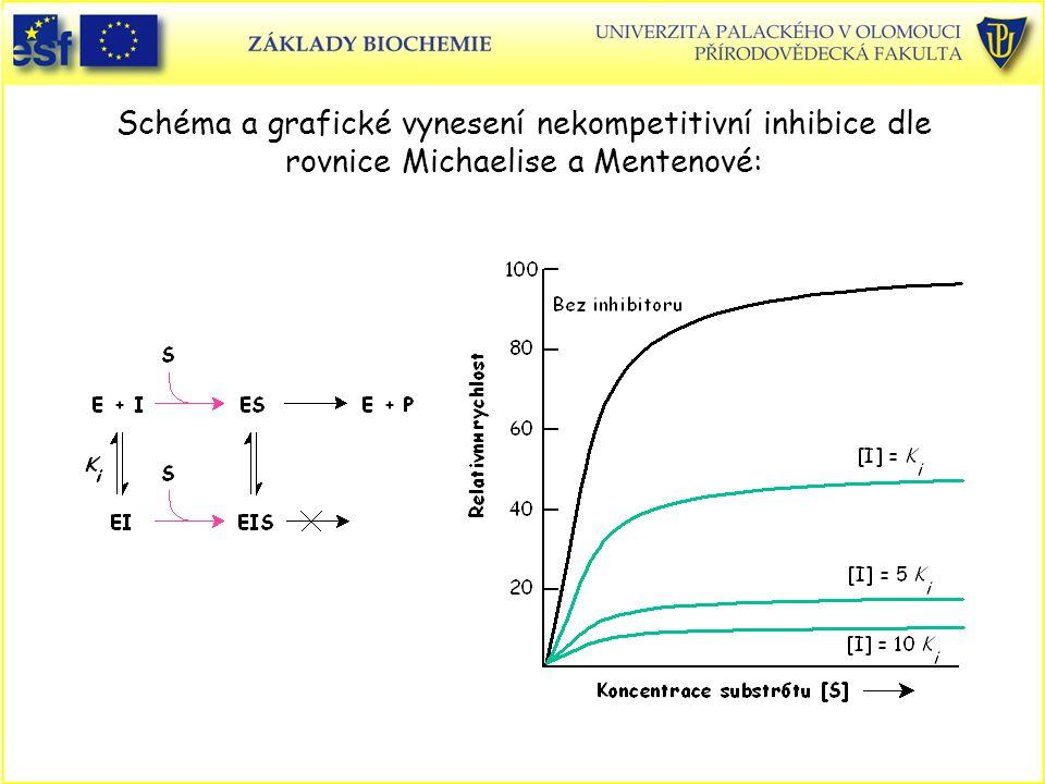 Schéma a grafické vynesení nekompetitivní inhibice dle rovnice Michaelise a Mentenové: