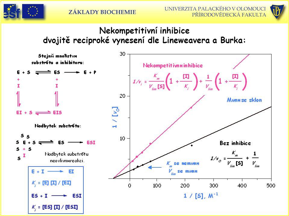 Nekompetitivní inhibice dvojitě reciproké vynesení dle Lineweavera a Burka: