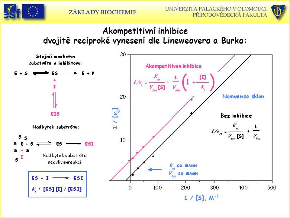 Akompetitivní inhibice dvojitě reciproké vynesení dle Lineweavera a Burka: