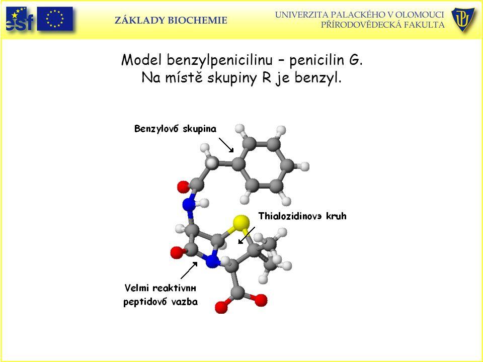 Model benzylpenicilinu – penicilin G. Na místě skupiny R je benzyl.