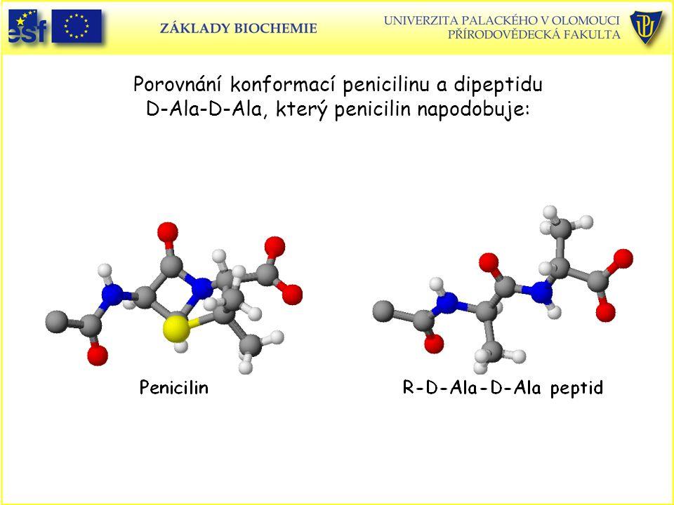 Porovnání konformací penicilinu a dipeptidu D-Ala-D-Ala, který penicilin napodobuje: