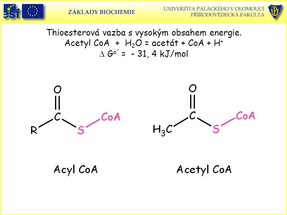 Thioesterová vazba s vysokým obsahem energie. Acetyl CoA + H 2 O = acetát + CoA + H + D G o´ = - 31, 4 kJ/mol