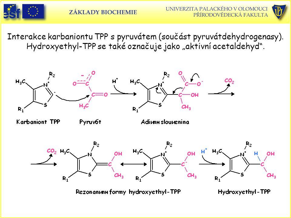 Interakce karbaniontu TPP s pyruvátem (součást pyruvátdehydrogenasy).