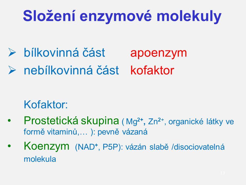 13  bílkovinná částapoenzym  nebílkovinná částkofaktor Kofaktor: Prostetická skupina ( Mg 2+, Zn 2+, organické látky ve formě vitaminů,… ): pevně vá