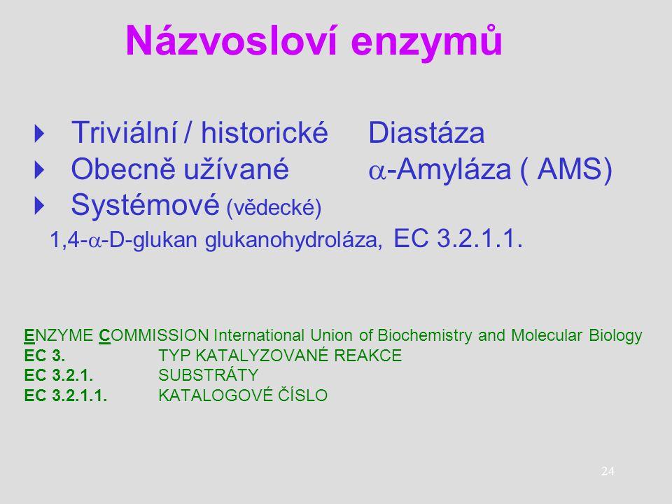 24 Názvosloví enzymů  T riviální / historické Diastáza  Obecně užívané  -Amyláza ( AMS)  Systémové (vědecké) 1,4-  -D-glukan glukanohydroláza, EC