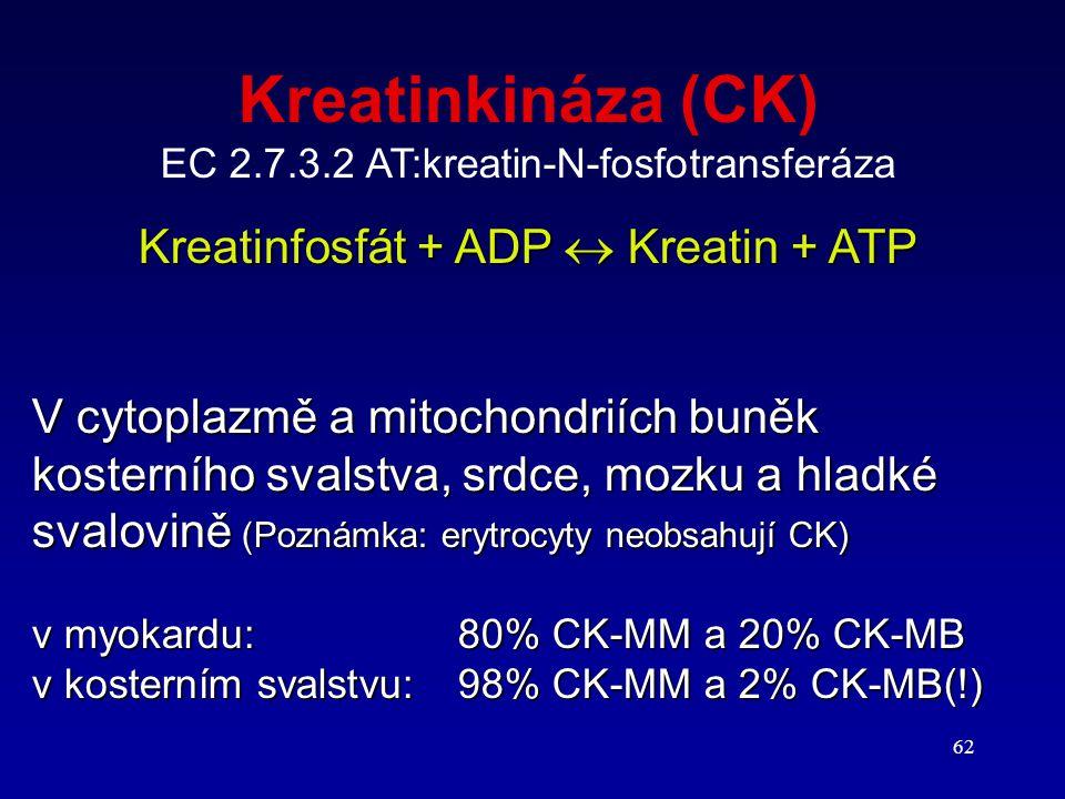 62 Kreatinkináza (CK) EC 2.7.3.2 AT:kreatin-N-fosfotransferáza Kreatinfosfát + ADP  Kreatin + ATP V cytoplazmě a mitochondriích buněk kosterního sval