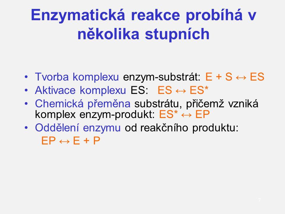 Enzymatická reakce probíhá v několika stupních Tvorba komplexu enzym-substrát: E + S ↔ ES Aktivace komplexu ES: ES ↔ ES* Chemická přeměna substrátu, p