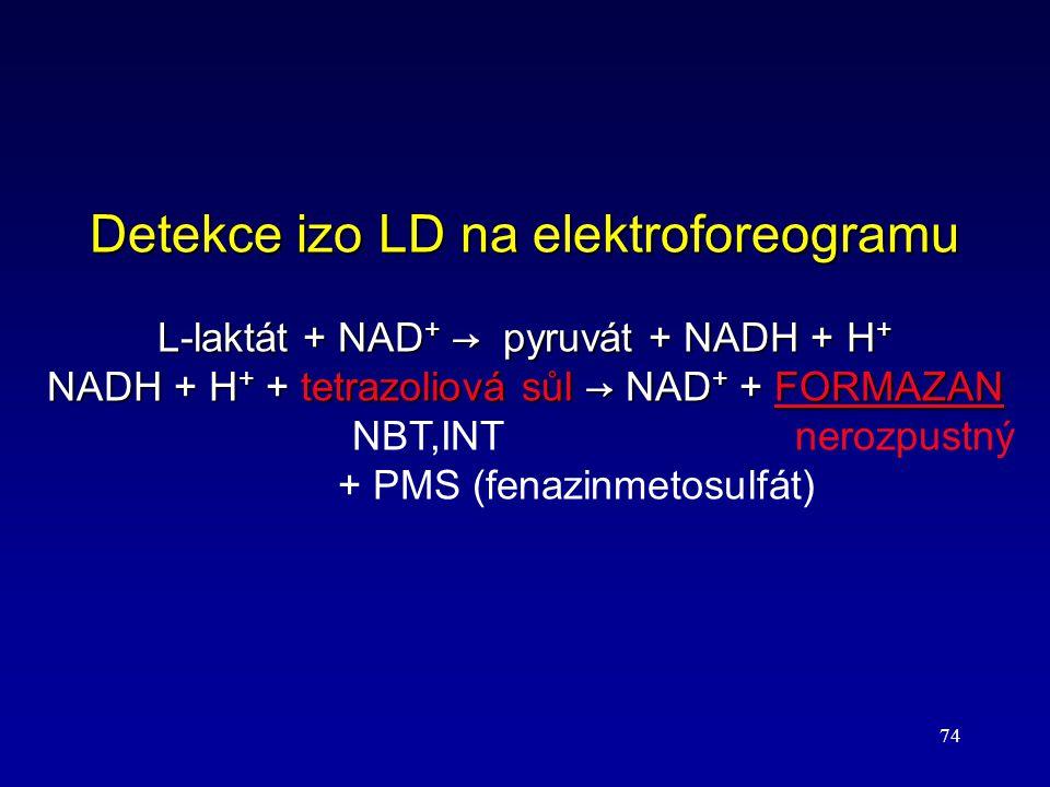 74 Detekce izo LD na elektroforeogramu L-laktát + NAD + → pyruvát + NADH + H + NADH + H + + tetrazoliová sůl → NAD + + FORMAZAN NADH + H + + tetrazoli