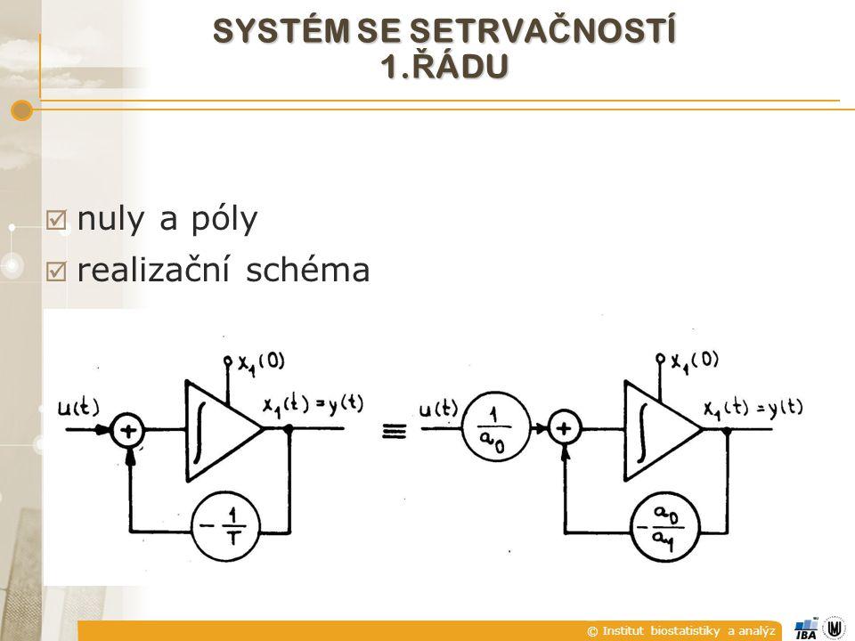 © Institut biostatistiky a analýz  nuly a póly  realizační schéma SYSTÉM SE SETRVA Č NOSTÍ 1. Ř ÁDU